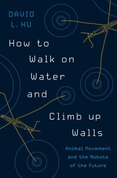 How to Walk on Water and Climb up Walls: Animal Movement and