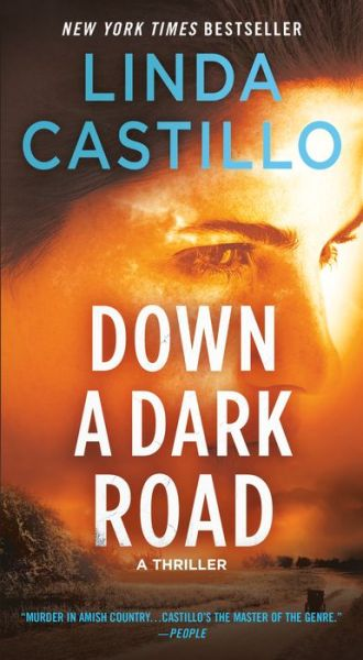 Down a Dark Road (Kate Burkholder Series #9)