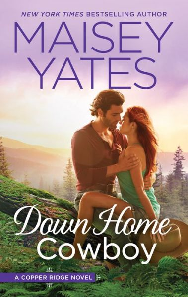 Down Home Cowboy: A Western Romance Novel
